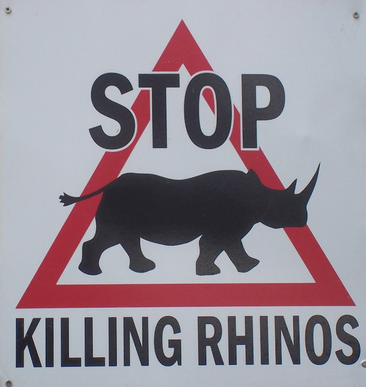 Stop killing human beings and other animals