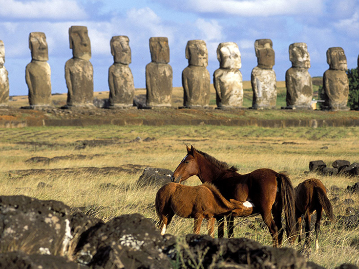 Horses of Easter Island, Chile